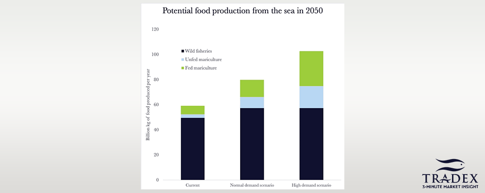 Ocean Food Supply Potential