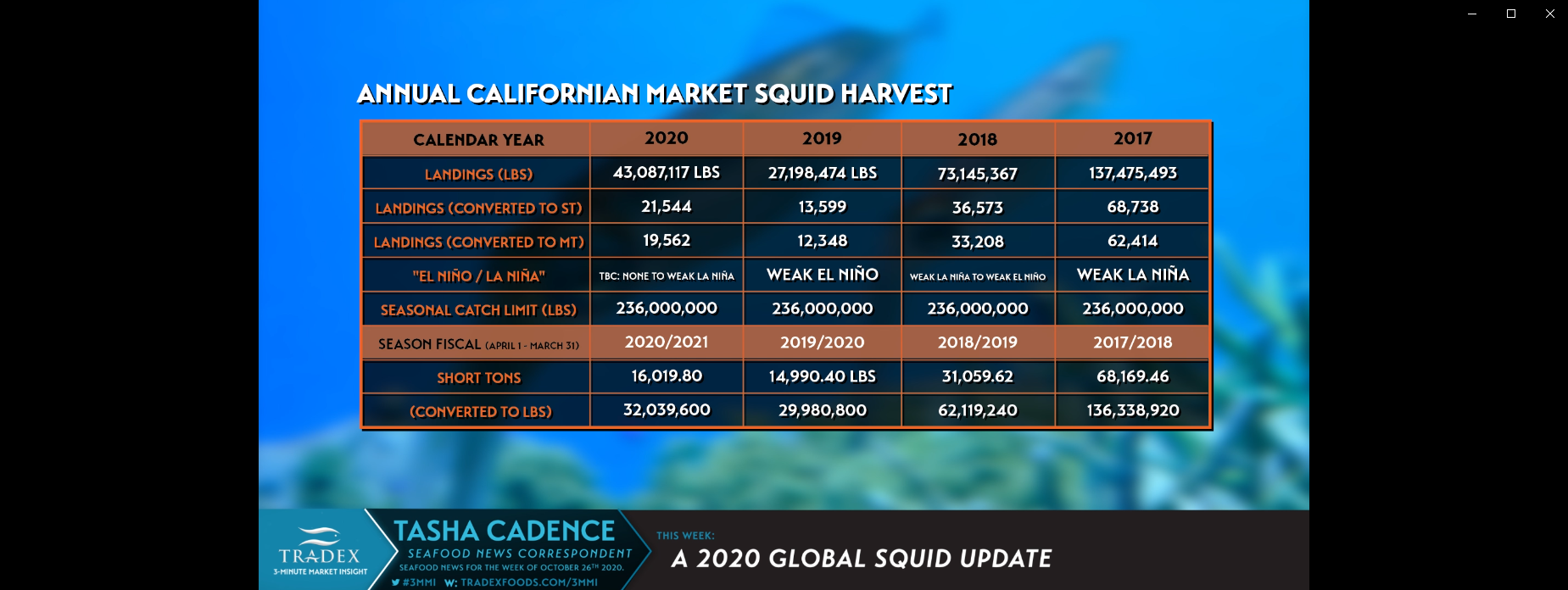 2020 Global Squid Harvest