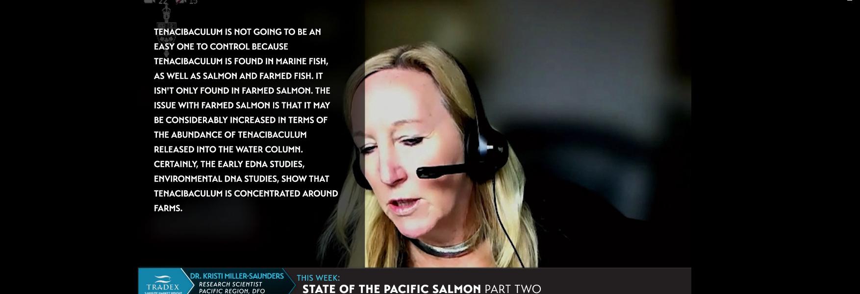 Dr. Kristi Miller-Saunders on Tenacibaculum maritimum nuturally in water