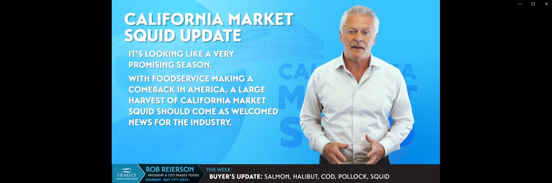California Market Squid Update