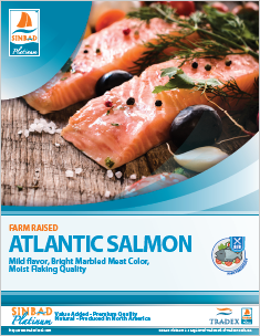 SINBAD Platinum Atlantic Salmon