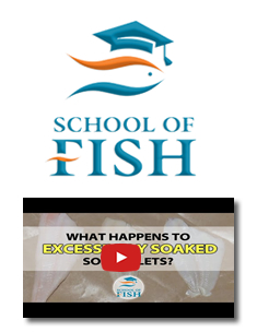 Tradex Foods School of Fish - Excessively Soaked Sole Fillets