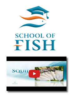 Tradex Foods School of Fish - Squid