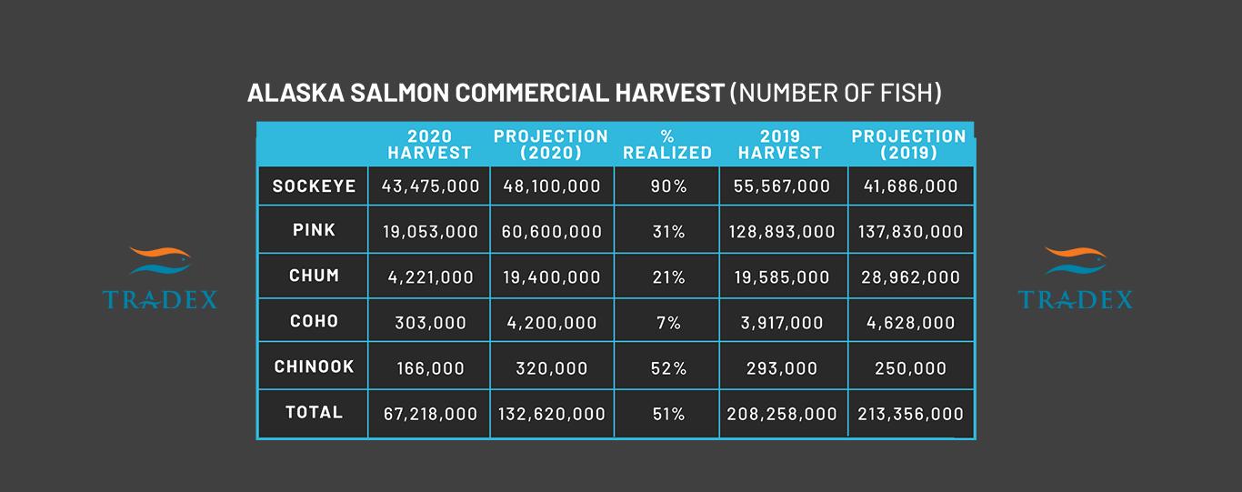 Alaska Salmon Harvest
