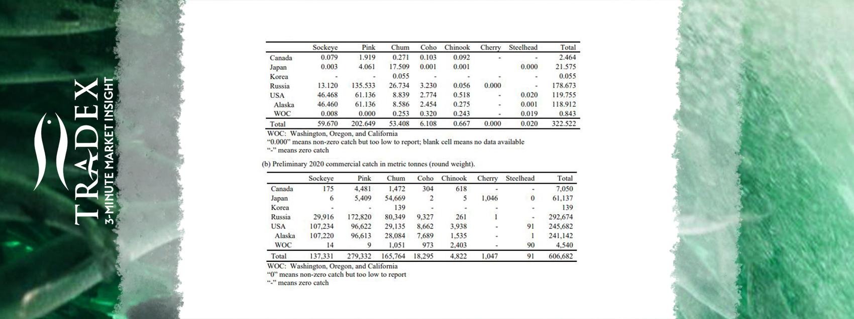 Sockeye and Chum Stats