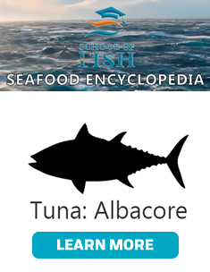 Seafood Encyclopedia - Albacore Tuna